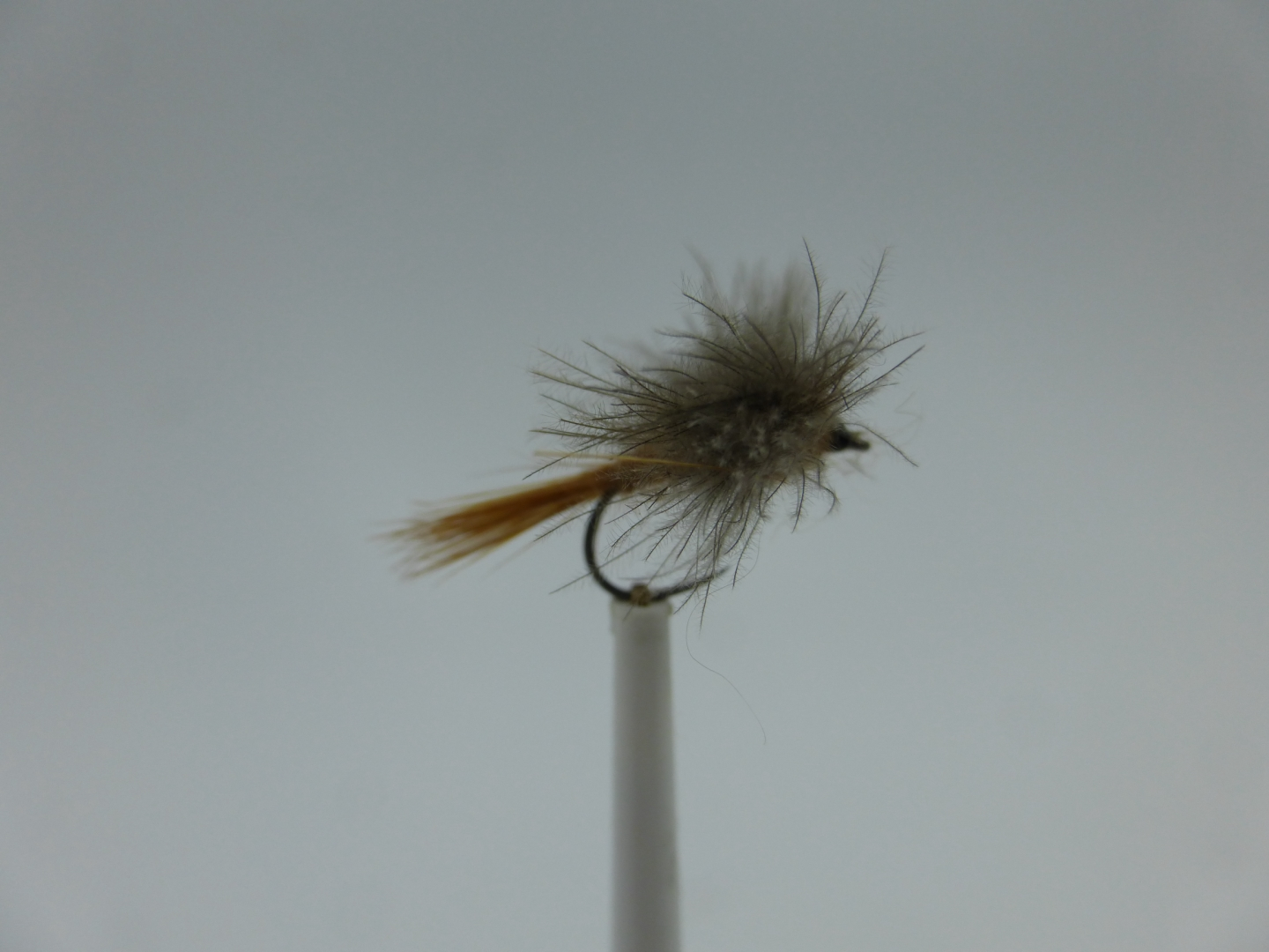 Size 12 CDC Mayfly Brown Barbless