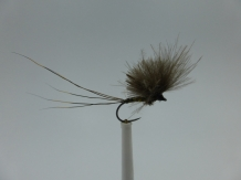 Size 18 CDC Upright Brown Barbless